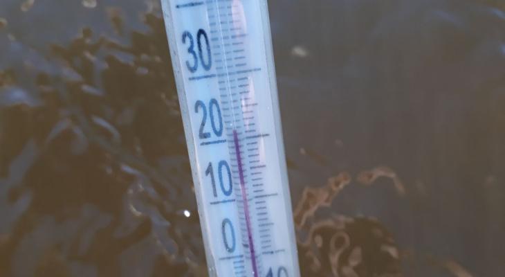 В Рязани начинается пляжный сезон. Измеряем температуру воды в водоемах - эксперимент от Pro Города