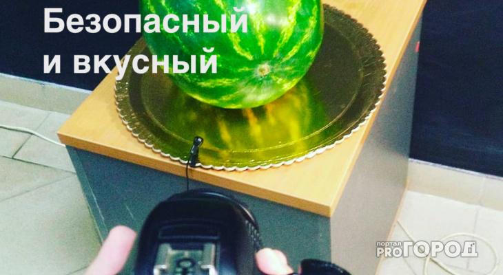 """Выбор арбуза от редактора """"Pro Город Рязань"""" - что за фрукт мы купили, опираясь на советы экспертов с базара"""