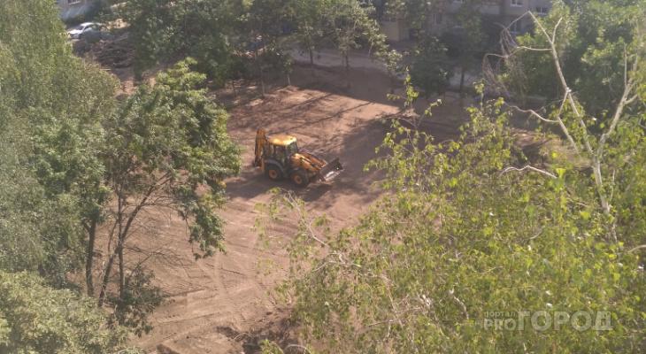 Жители Канищева жалуются на вырубку деревьев