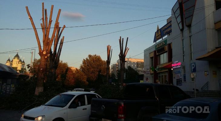 Жители Рязани пожаловались на мусор оставленный рабочими после опиловки деревьев