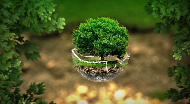 В РГУ имени Есенина откроется НИИ промышленной экологии
