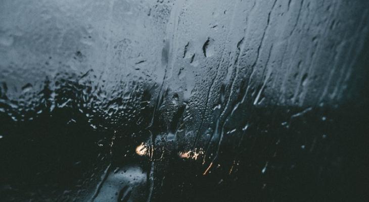 О погоде в Рязани - новая рабочая неделя выдастся теплой