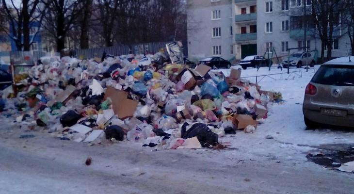 Горой мусора на Крупской заинтересовались в администрации