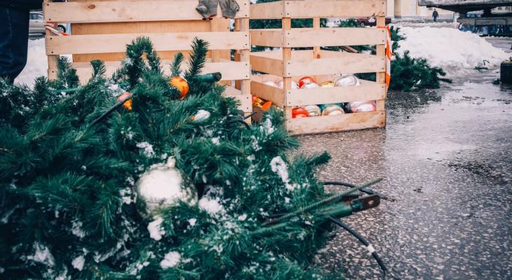 В Рязани открылись елочные базары