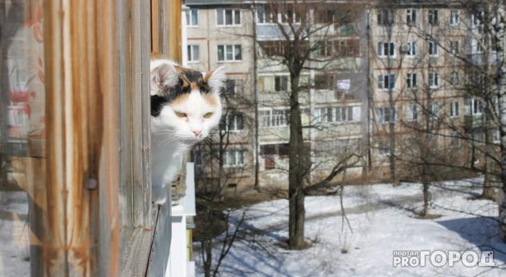 О погоде в Рязани на выходных: в городе потеплеет до +1 градуса