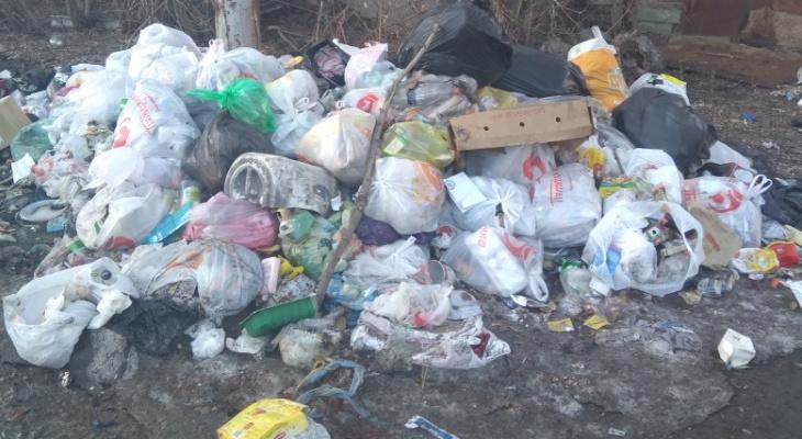 «Около дома сформировалась помойка»: рязанцы жалуются на стихийную свалку мусора у себя во дворе