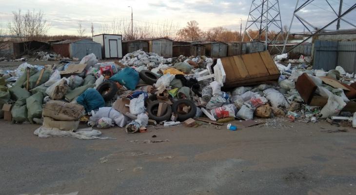 Вывоз мусора в Рязанской области обойдется почти в полтора миллиарда рублей
