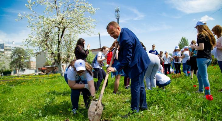 В Рязани 100 волонтеров высадили 18 елей