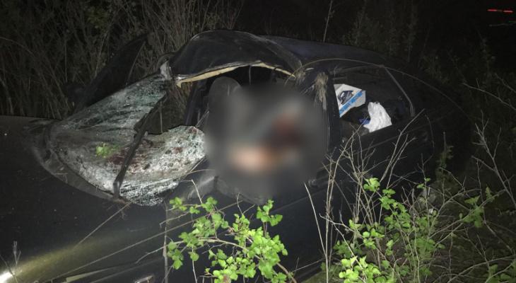 Под Рязанью водитель сбил лося и погиб на месте