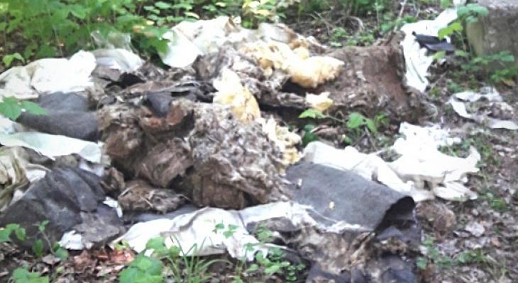 Народный контроль: почему после ремонта коммунальщики оставили после себя мусор?