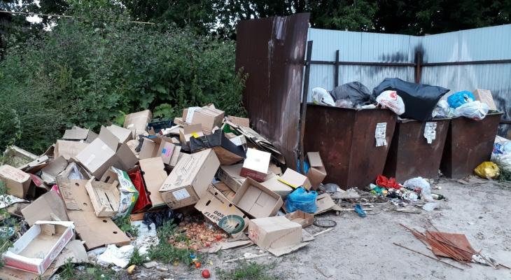 В центе Тумы образовалась огромная свалка: мусор не вывозят уже 3 месяца