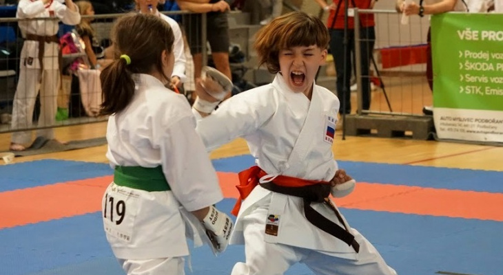 Сётокан каратэ – восточное боевое единоборство для детей думающих родителей