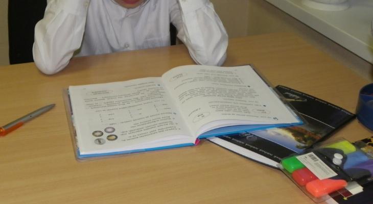 Биологии не будет: школьник второй месяц учится без учебников
