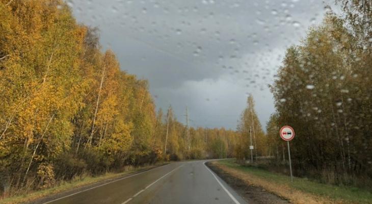 Прогноз погоды на выходные: небольшое потепление и дожди