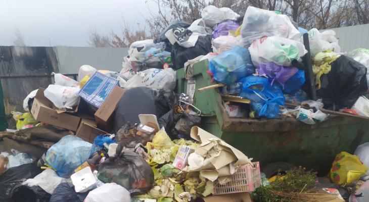 """""""Рядом с мусоркой бегают крысы"""": рязанец пожаловался на грязь в посёлке Мирный"""