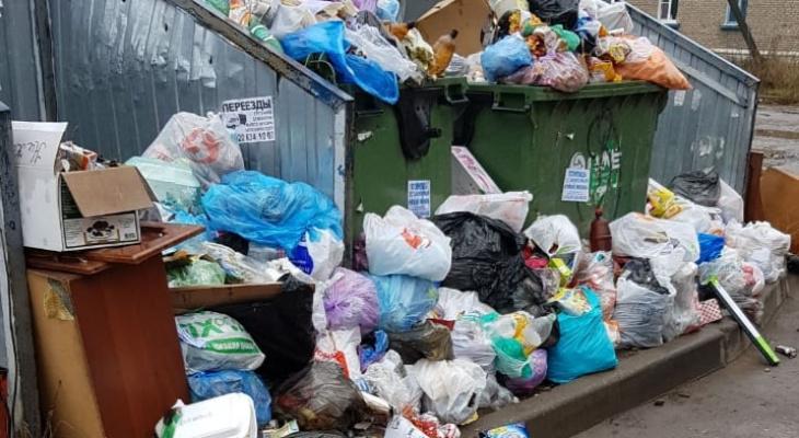 Лайфхак от рязанки - что нужно сделать, чтобы у вас вывезли мусор из двора