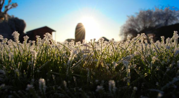 Аномальное тепло или суровые морозы: синоптики рассказали о погоде в январе