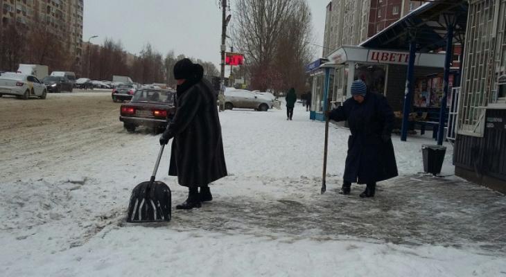 Метеорологи обещают рязанцам в пятницу снег