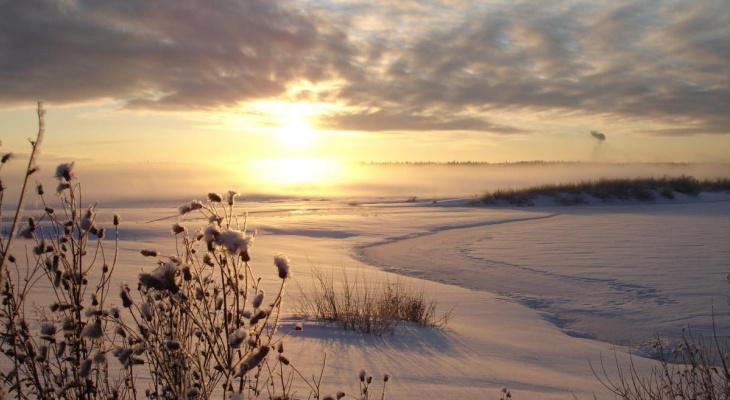 Какая погода ждет рязанцев в выходные: прогноз синоптиков