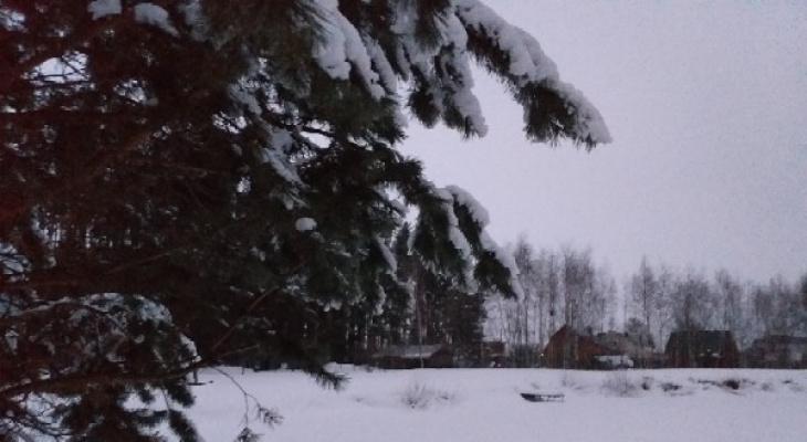 Ночью в Рязани похолодает до -9