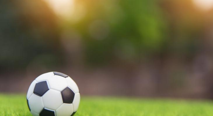 Через два года в Рязани появится футбольный манеж