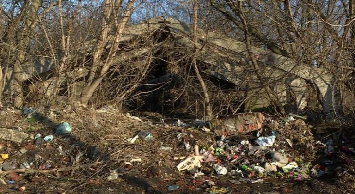 Село под Рязанью завалено мусором. Власти предлагают людям взять в руки лопаты