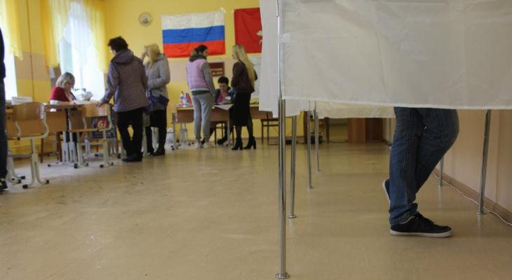 Голосование по Конституции: - Нам пришлось приносить списки людей на флэшках, чтобы в почте не было следов