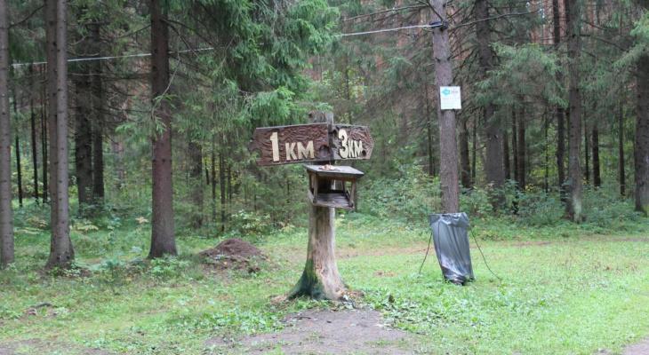 Весенняя охота: Минприроды Рязани информирует о сроках