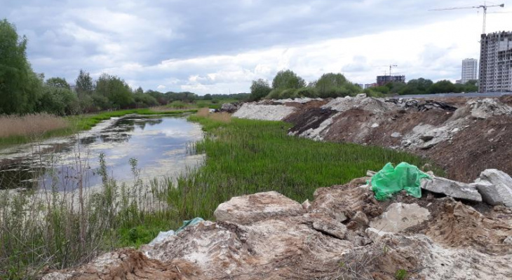 """Пруд за """"Премьером"""" завалили мусором: Про Город побывал на месте будущей стройки"""