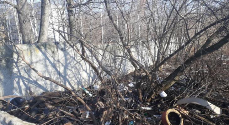 Полчища крыс: очередная стихийная свалка на Белякова