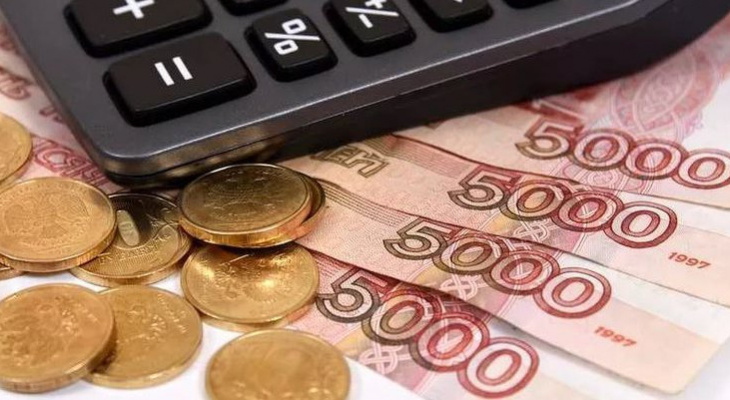 Около 300 миллионов выделено Рязанской области на соцвыплаты