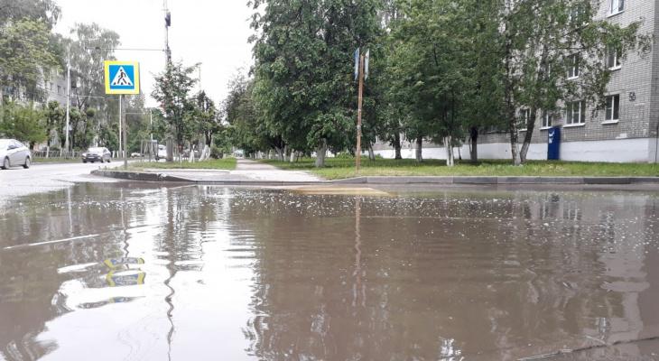 """""""Мокрый"""" тест для знатоков города: узнай улицу Рязани по потопу"""