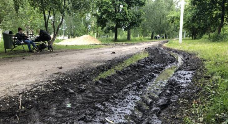 Благоустройство Комсомольского парка: авторская колонка местного жителя