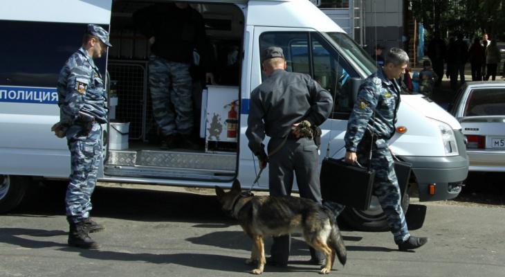 Плановый обход: в полиции объяснили появление кинологов около школы №71