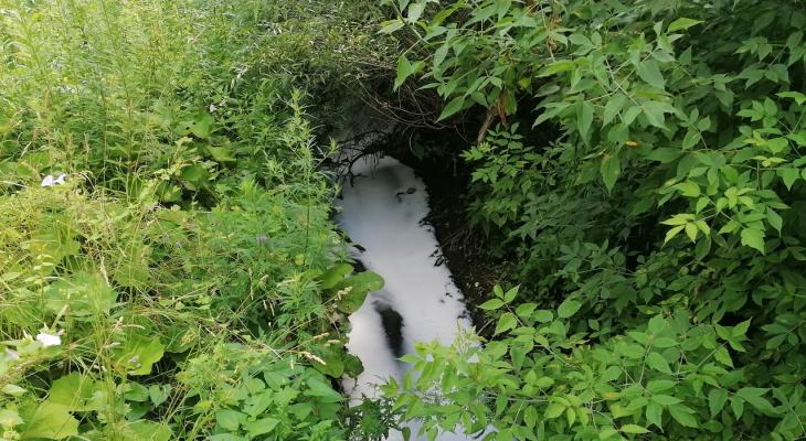 Белая вода: на улице Военных Автомобилистов загрязнили ручей