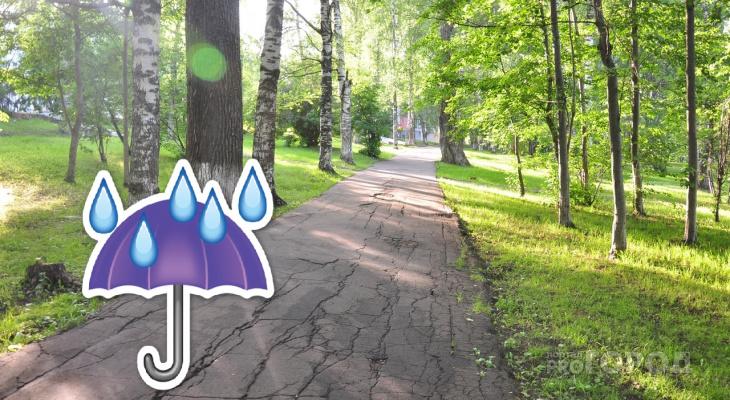Погода в Рязани: на этой неделе лето не придет
