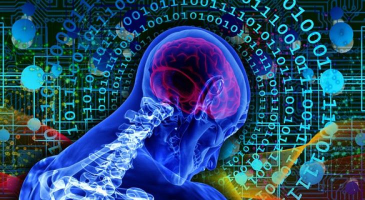 Тест: на сколько процентов вы используете свой мозг?