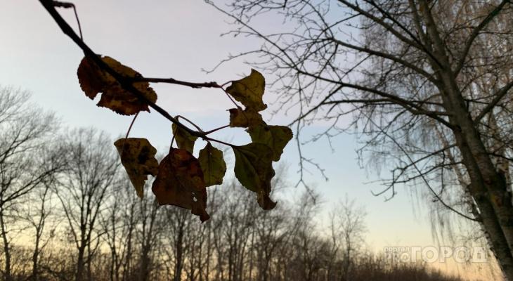 Гололед и сильный ветер: в Рязани выпустили метеопредупреждение на пятницу