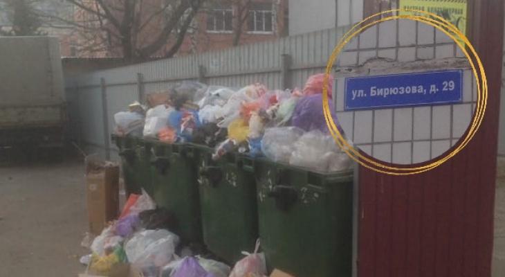 Вывоз мусора производится ежедневно: региональный оператор ответил на жалобу рязанца из-за переполненных мусорных баков