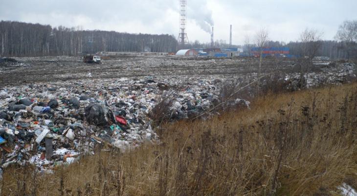 Новые отходы не завозились: в региональном Минприроды рассказали о рекультивации турлатовской свалки