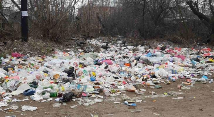 Вывезли 12 кубометров мусора: в Рязани убрали свалку на улице 2-ой Механизаторов