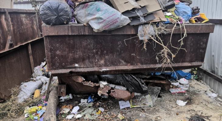 88 миллионов: в Рязани мусорный оператор получит деньги из федерального бюджета