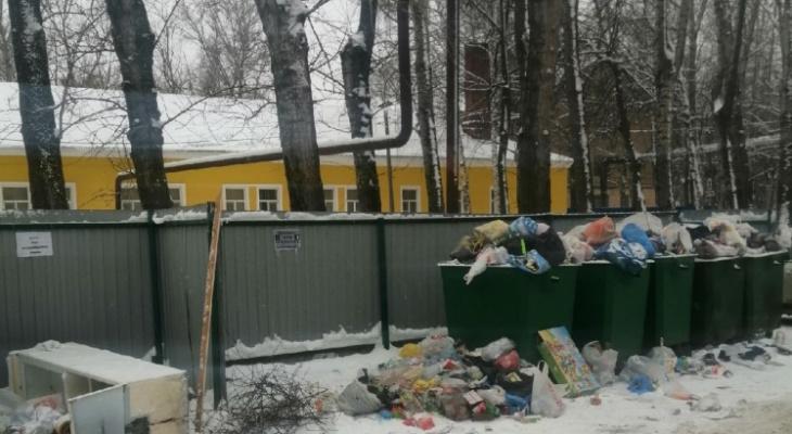 Свинство в Дягилеве: на улице Белякова в Рязани развелись крысы
