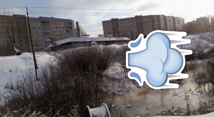 Экология в опасности: мэрия осмотрит овраг в дендропарке, куда сливают нечистоты