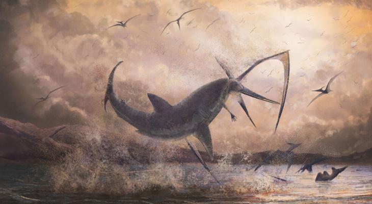 Парк Шацкого периода: учёные начали исследовать обитателей мезозойского моря