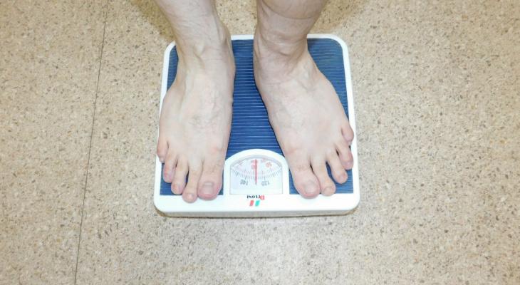 Расточительно для государства: Жириновский предложил ввести в России норму веса