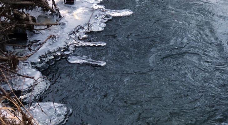 Мощное потепление: на Рязань движется атлантический циклон