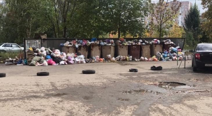 Рекультивация за наш счёт: Минприроды хочет повысить тарифы на вывоз отходов, чтобы восстановить мусорные полигоны