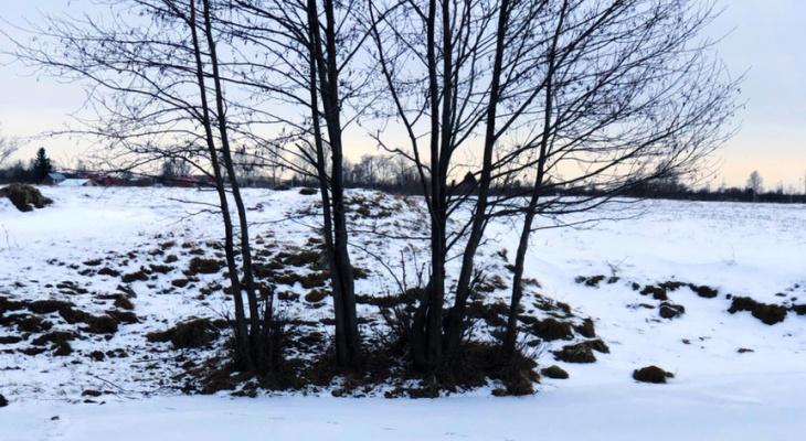Резкие скачки температуры: погода в Рязани на выходные