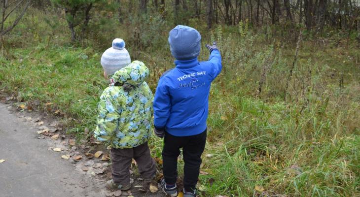 Эхо ковида: ждёт ли Рязанскую область демографическая яма?